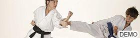 Martial Arts Services